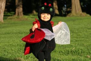 A cute ladybug outfit