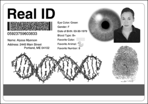 Real ID Card Mockup from TheIntelHub.com