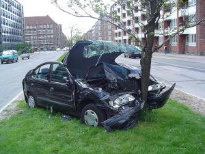 A car crashed into a tree.