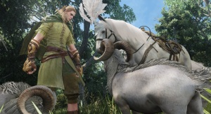 It's a magic elf talking to a fancy horse and possibly magic goats. You know, typical MMO stuff.